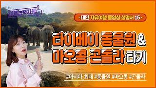 [대만자유여행 15편] 아시아 최대 동물원! 타이베이 …