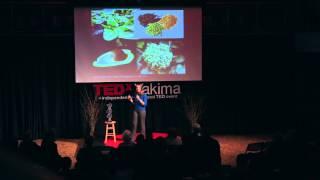Epigenetics: You are what you eat | Jennifer Dechaine | TEDxYakimaSalon