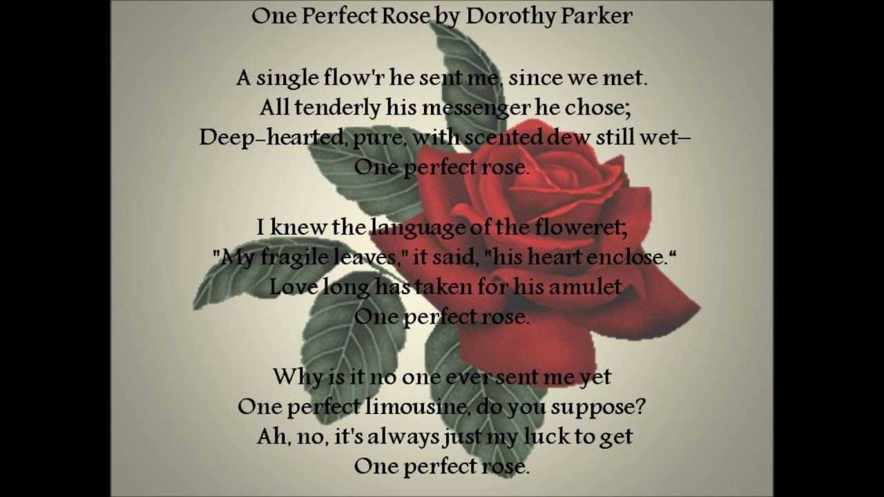 One Perfect Rose by Dorothy Parker - YouTube