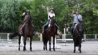 Рекламный ролик IWSEN Horsemarket(, 2016-10-06T15:36:04.000Z)