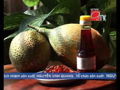 Gấc   Thuốc Nam của người Việt   O2 TV
