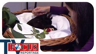 Liebe bis zum Ende – Das Geschäft mit Fiffis Tod - Focus TV Reportage