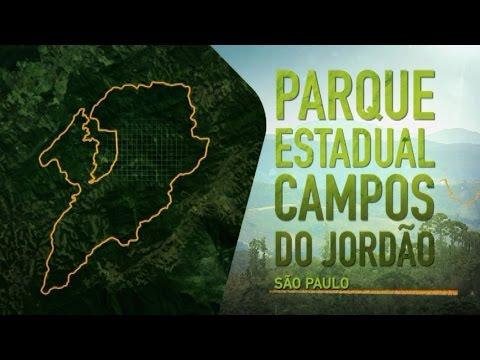 Parques de São Paulo: Campos do Jordão