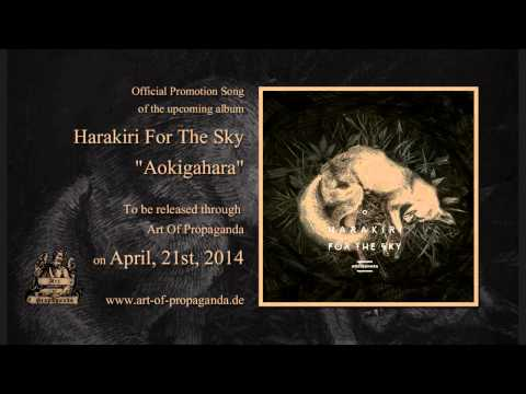 Harakiri for the sky homecoming denied