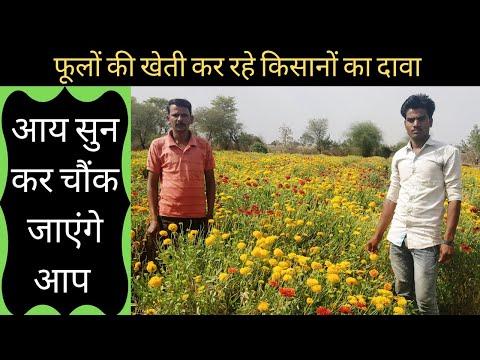 1 एकड़ से कम भूमि में फूलों की खेती कर किसान कर रहे लाखों रूपये की कमाई |