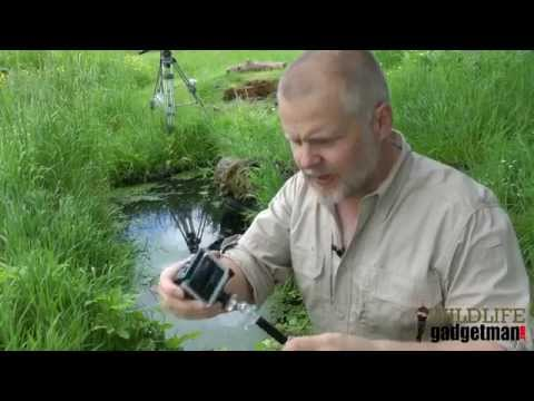 Go Pro Pond Dipping With Wildlife Gadget Man