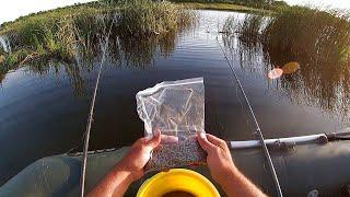 Рыбалка Вечерний ЗАКОРМ My fishing