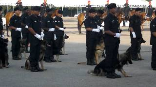 World Class Malaysian Royal Police Squad.