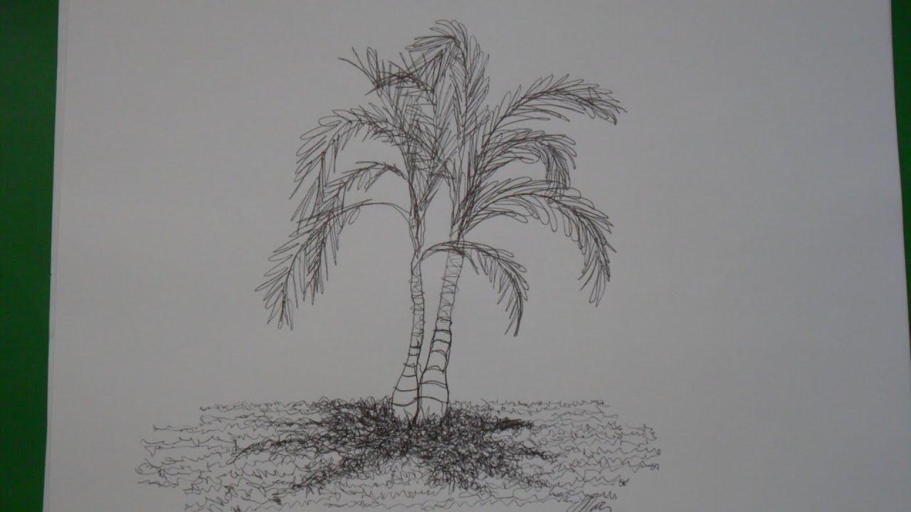 Dibujo De Palmera. Beautiful Dibujo De Palmeras Tropicales. Great ...