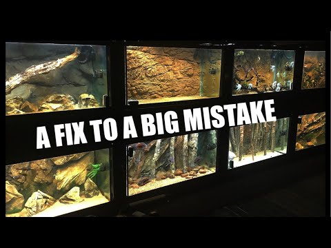 Why These Aquariums Were A Mistake