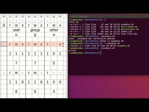Linux команда chmod - команда изменения прав доступа. - YouTube
