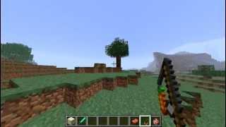 bug graphique cochon. Minecraft pre-release 1.4