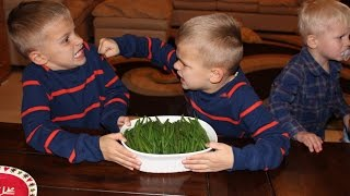 Twins Fight Over Vegetables