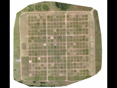 Ground-truthing drone data with an iconic ecology experiment