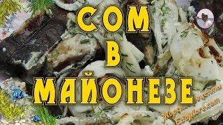 Рецепты из сома - Часть1. Маринованный сом в майонезе видео и фото от Petr de Cril'on & SonyKpK
