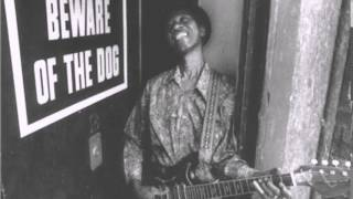 Hound Dog Taylor - See Me In The Evening