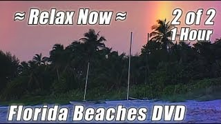 1 HOUR OF RELAXING OCEAN WAVES #2 Florida Sunsets Relax Beach Wave Sounds for Studying Video
