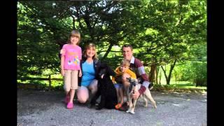 Rescued Poodles 2013