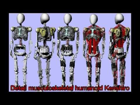 robot copies your muscles and bones - youtube, Skeleton