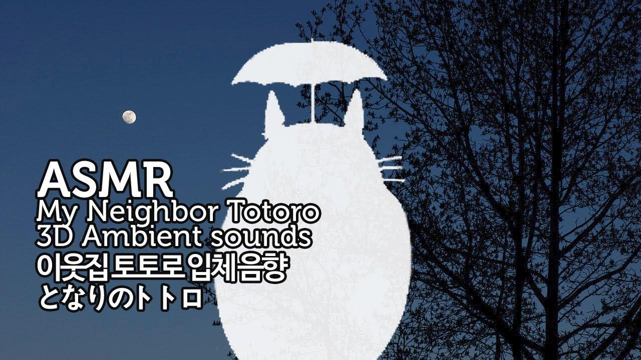 ASMR 이웃집 토토로 입체 음향 | My Neighbor Totoro 3D Ambient Sounds | 버스정류장과 밤의 오카리나 | となりのトトロ