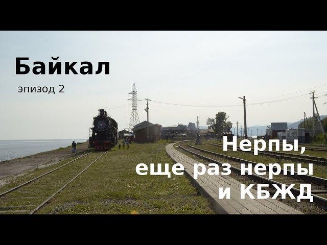 #50 Россия, Байкал: нерпы, виртуальное погружение и КБЖД