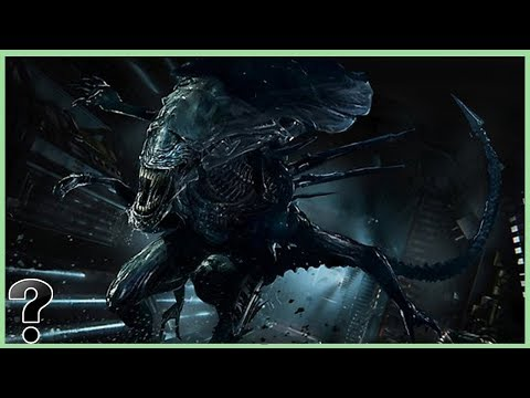 What If The Xenomorph Queen Was Real?
