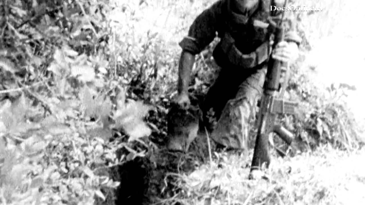 War footage - Victim of war Vietnam