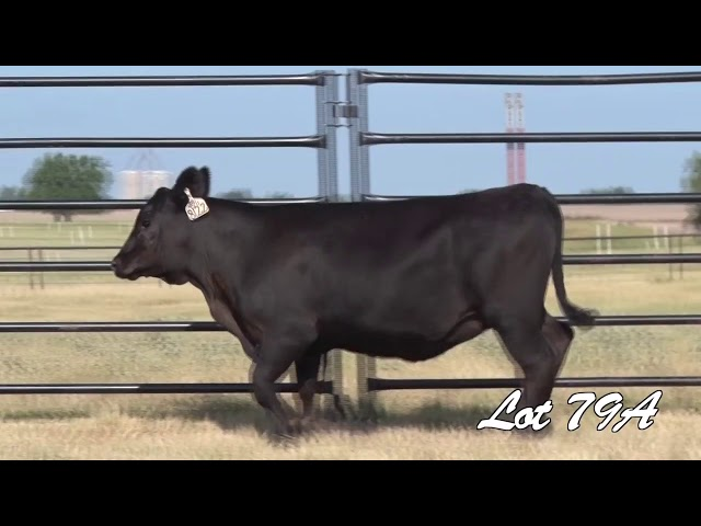 Pollard Farms Lot 79A