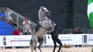 Спасская башня 2015.Андалузские лошади.Spanish horse.Испания