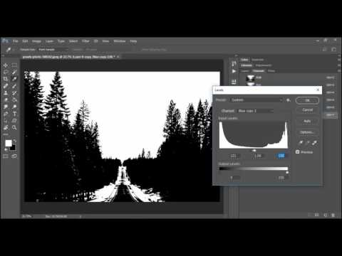 Adobe Photoshop CC Masking With Channels