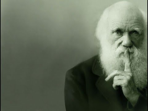 Darwin, Evolution, Morality and Religion