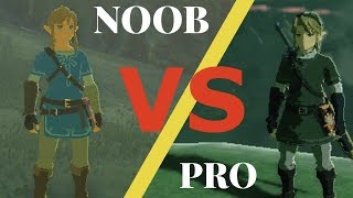 Breath of the Wild NOOB VS  PRO