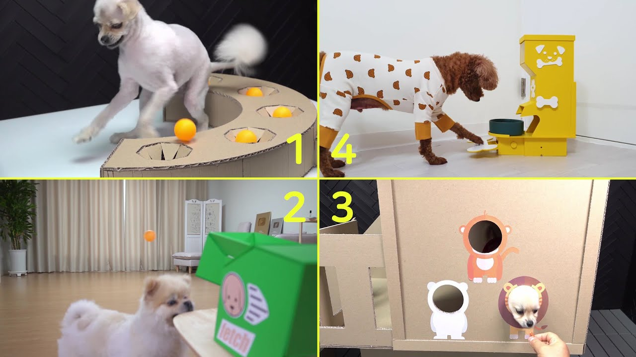 4 Amazing Making for Dogs