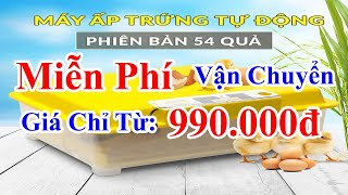 Máy Ấp Trứng Ánh Dương A100 – Vỏ Nhựa PP/ABS Cao Cấp, Tự Động Hoàn Toàn   Ánh Dương HCMC
