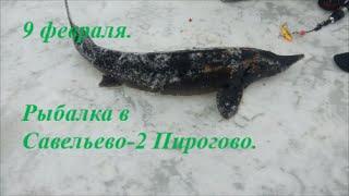Рыбалка в Подмосковье(Все новости вы можете смотреть в нашей группе вконтакте https://vk.com/savelevo2 Все новости с водоемов смотрите на..., 2016-02-10T06:30:34.000Z)