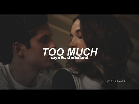 Zayn - Too Much Ft. Timbaland (Traducida Al Español)