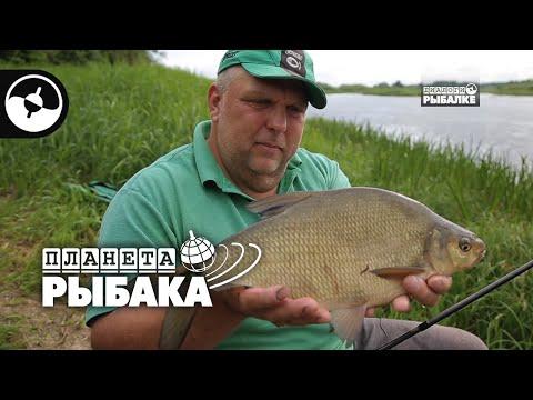 Рыбалка с чемпионом мира. Николай Алексеев и Нормунд Грабовскис | Планета рыбака