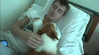 Пес Элвис с Лешей в больничной постели