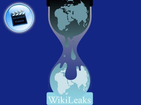 Wikileaks: 1. Info-Krieg 2010 - ???