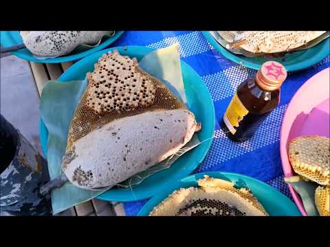 Amazing food in savannakhet laos market - Asian street food vdo