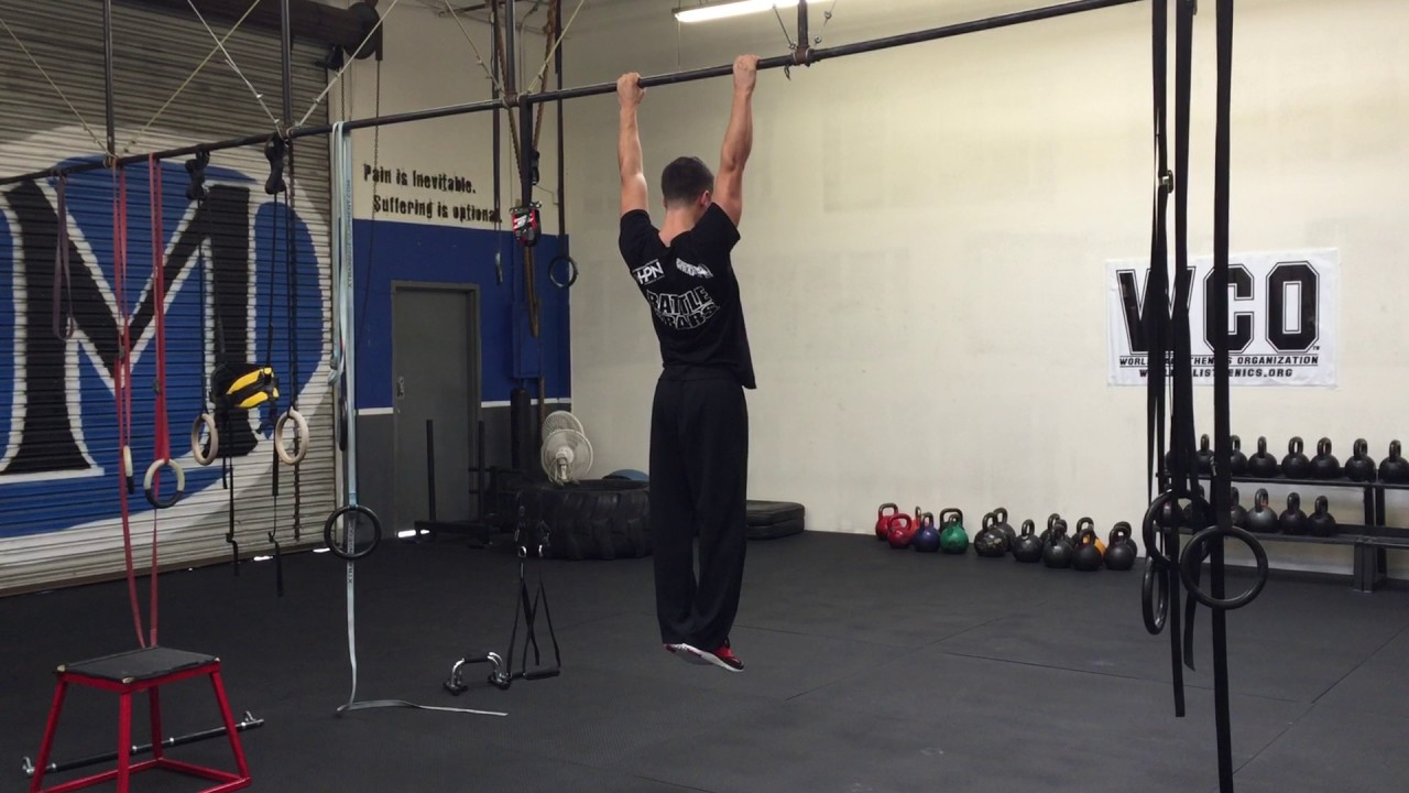 Hanging Scapula Pull