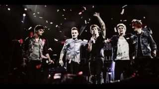 Story Of My Life - One Direction (vocals only)