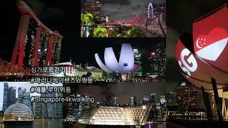 싱가포르걷기25 마리나베이샌즈 쇼핑몰(애플/루이뷔통)+…