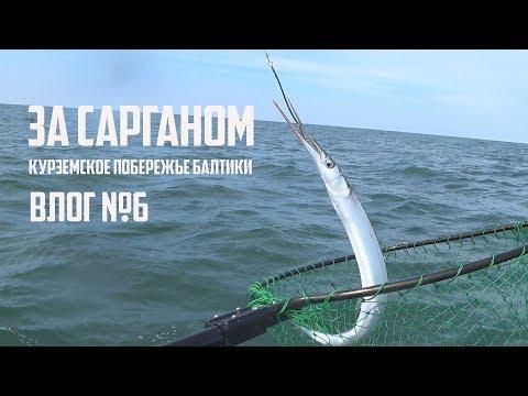 За сарганом Рыбалка на Курземском побережье Балтики