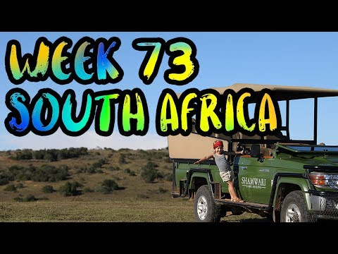Our 1st Time in Africa!! Wild Lions and Elephants on the Safari! /// WEEK 73 : South Africa