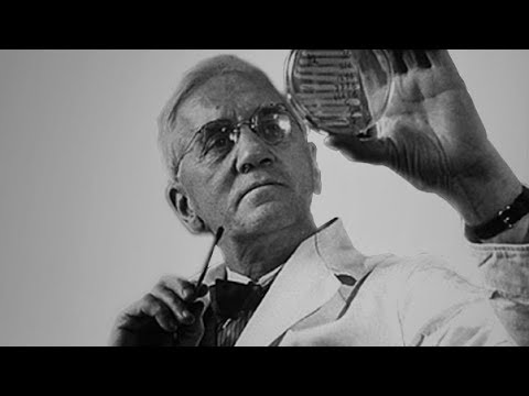 alexander fleming 1 Alexander fleming was the doctor who revolutionized medicine with his discovery of penicillin learn more at biographycom.