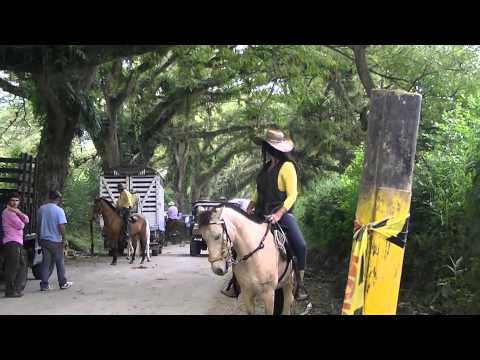 horse-riding-cordoba.-tourism-quindio-colombia,beautiful-landscapes-and-women-23.m2ts