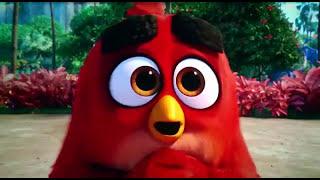 Angry Birds Movie #Clip 5