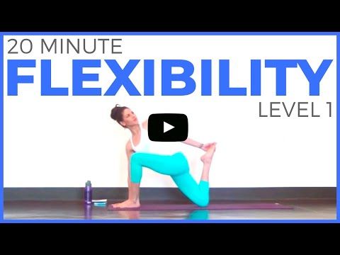 20 Minute Yoga For Flexibility Level 1 Full Body Yoga Stretch Sarah Beth Yoga Youtube