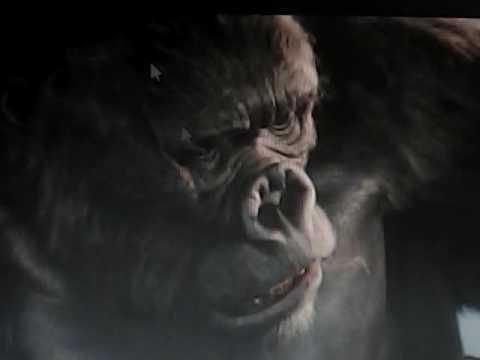 Simba a tarzan spoof clip tarzan rescues the gorillas from clayton part 1 clip edit youtube - Tarzan gorille ...